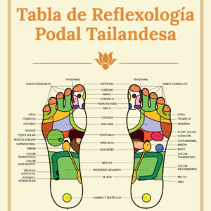 cartel_tabla_reflexologia_2